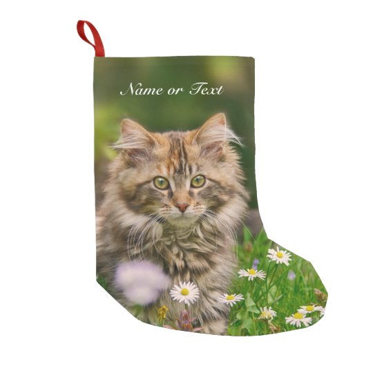 Kitten Christmas.Cute Maine Coon Kitten Cat Mantle Personalized Small Christmas Stocking