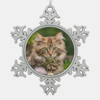 Cute Maine Coon Kitten Cat Portrait Photo ** Snowflake Pewter Christmas Ornament