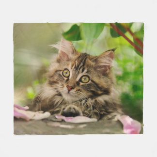 Cute Maine Coon Kitten cozy Fleece Blanket
