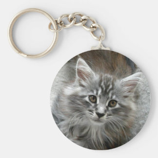 Cute Maine Coon kitten keychain