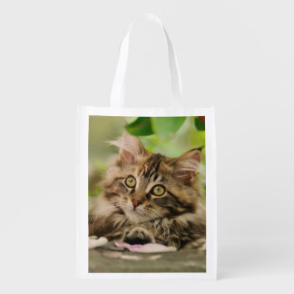 Cute Maine Coon kitten Reusable Grocery Bag