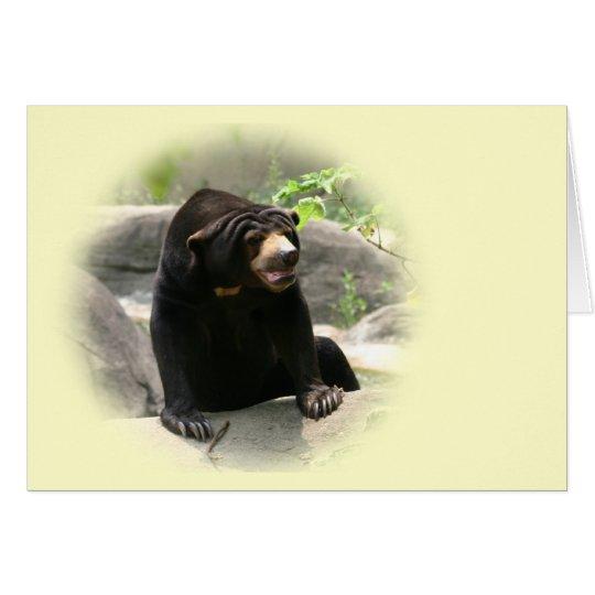 Cute Malaya sun bear Card