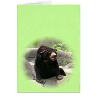 Cute Malaya sun bear Greeting Card