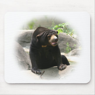 Cute Malaya sun bear Mouse Pad