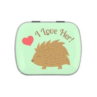 Cute Male Hedgehog in Love, I love Her Candy Tins