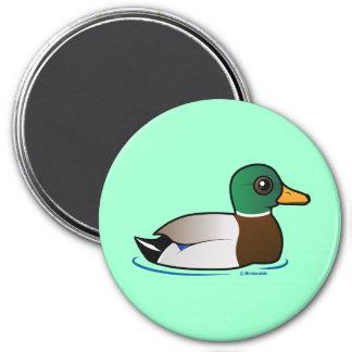 Cute Mallard Male 3 Inch Round Magnet