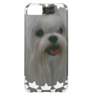Cute Maltese iPhone 5C Covers