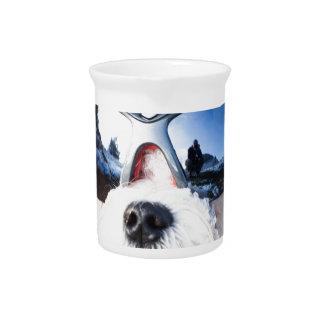Cute Maltese Dog Beverage Pitcher