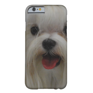 Cute Maltese Dog Barely There iPhone 6 Case