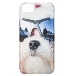 Case-Mate Barely There iPhone 5C Case with Maltese Phone Cases design
