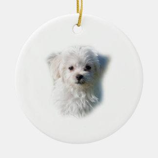 Cute Maltese Dog Ceramic Ornament