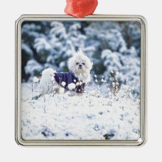 Cute Maltese Dog Christmas Tree Ornaments