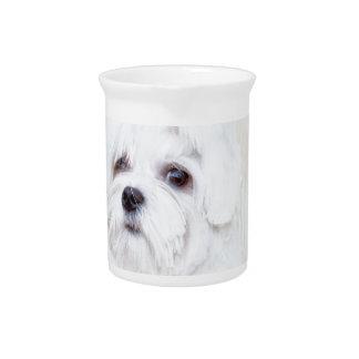 Cute Maltese Dog Drink Pitcher