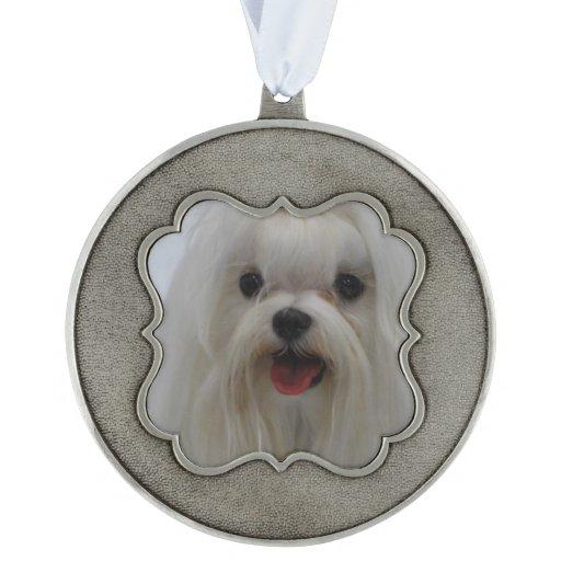 Cute Maltese Dog Scalloped Ornament