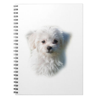 Cute Maltese Dog Notebook