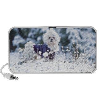 Cute Maltese Dog Portable Speaker