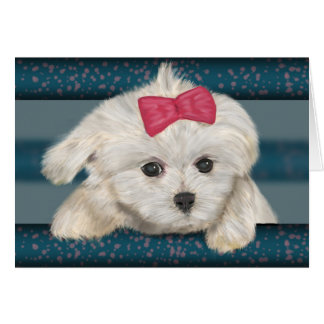 Cute Maltese Dog with Creme Fur and Red Ribbon Card