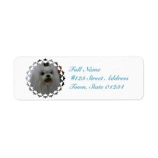 Cute Maltese Return Address Label