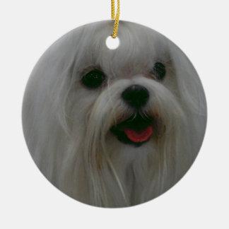 Cute Maltese Ornaments