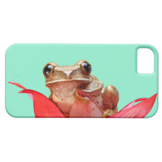 Cute Marbled Reed Frog Africa Aquamarine iPhone 5 Cover