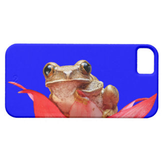 Cute Marbled Reed Frog Africa True Blue iPhone 5 Cover