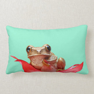 Cute Marbled Reed Frog Red Flower Aquamarine Lumbar Pillow