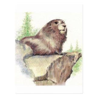 Cute Marmot, Animal Nature, Wildlife Watercolor Postcard