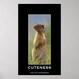 Cute Marmot  Wildlife Motivational Photo Poster