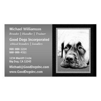 Cute Mastiff dog Business Card