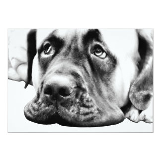 Cute Mastiff dog 5x7 Paper Invitation Card