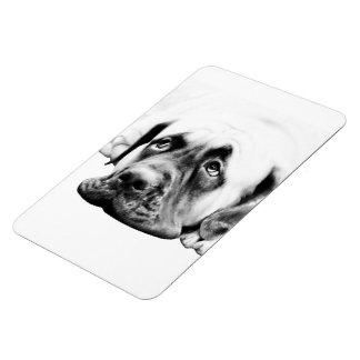 Cute Mastiff dog Rectangular Photo Magnet