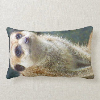 Cute Meerkat at Attention, Kansas City Zoo Pillows