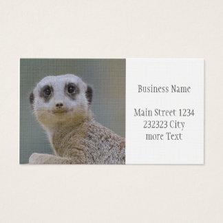 Cute meerkat business card