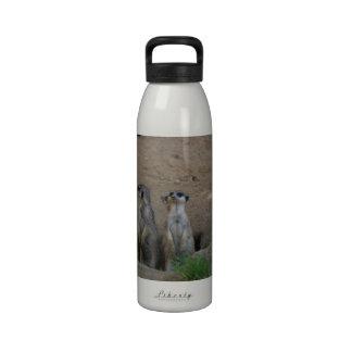 Cute Meerkat Family saying Hello Water Bottle