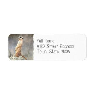 Cute Meerkat  Mailing Labels