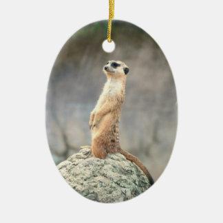 Cute Meerkat  Ornament