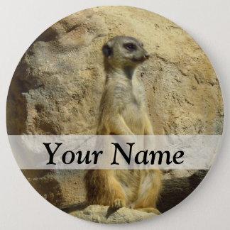 Cute meerkat photograph pinback button