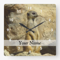 Cute meerkat photograph square wall clock