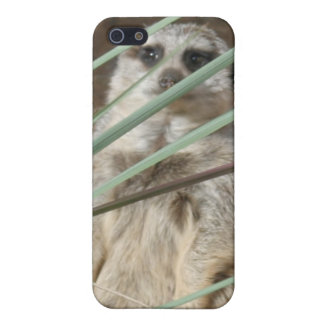 Cute Meerkat Speck Case Cases For iPhone 5