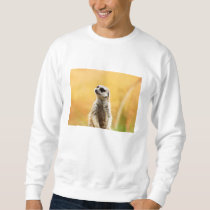 Cute Meerkat Sweatshirt