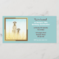 Cute Meerkats Birthday Invitation Photo Card