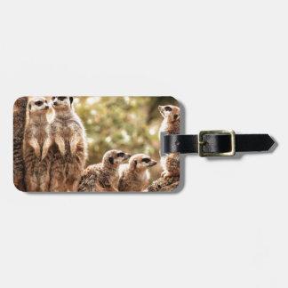 Cute Meerkats Luggage Tag