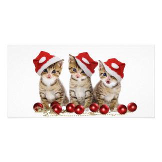 Cute Merry Christmas Kittens Card