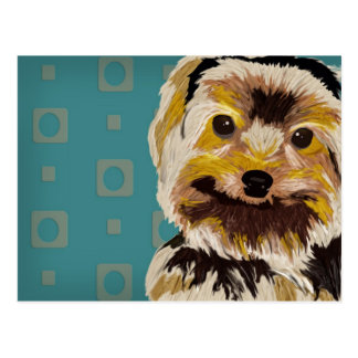 Cute Mixed Maltese in Brown and Yellow Tones Postcard