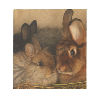 Cute Mom and Baby Angora Rabbits Memo Notepad
