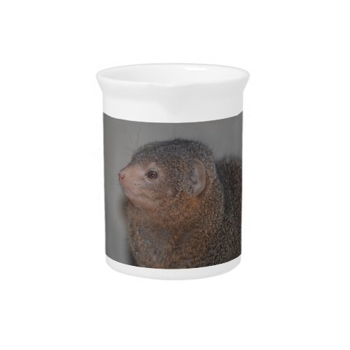Cute Mongoose Beverage Pitcher