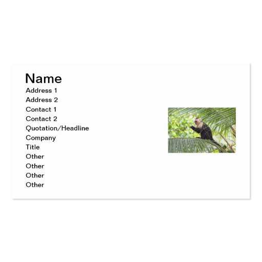 Cute Monkey on a Palm Tree Double-Sided Standard Business Cards (Pack Of 100)
