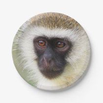 Cute monkey portrait paper plate