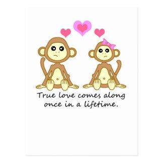 Cute Monkeys - True Love Comes Along Once in a... Post Card