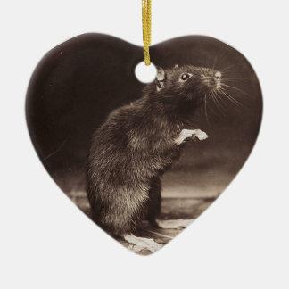 Cute Morbid Rat Early Photography Ceramic Ornament